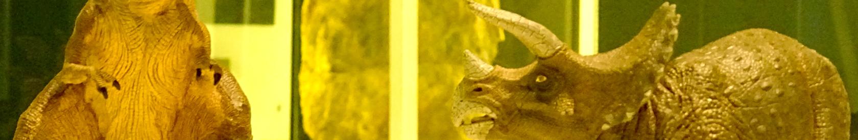 """La exposición """"Els Nostres Dinosaures"""""""