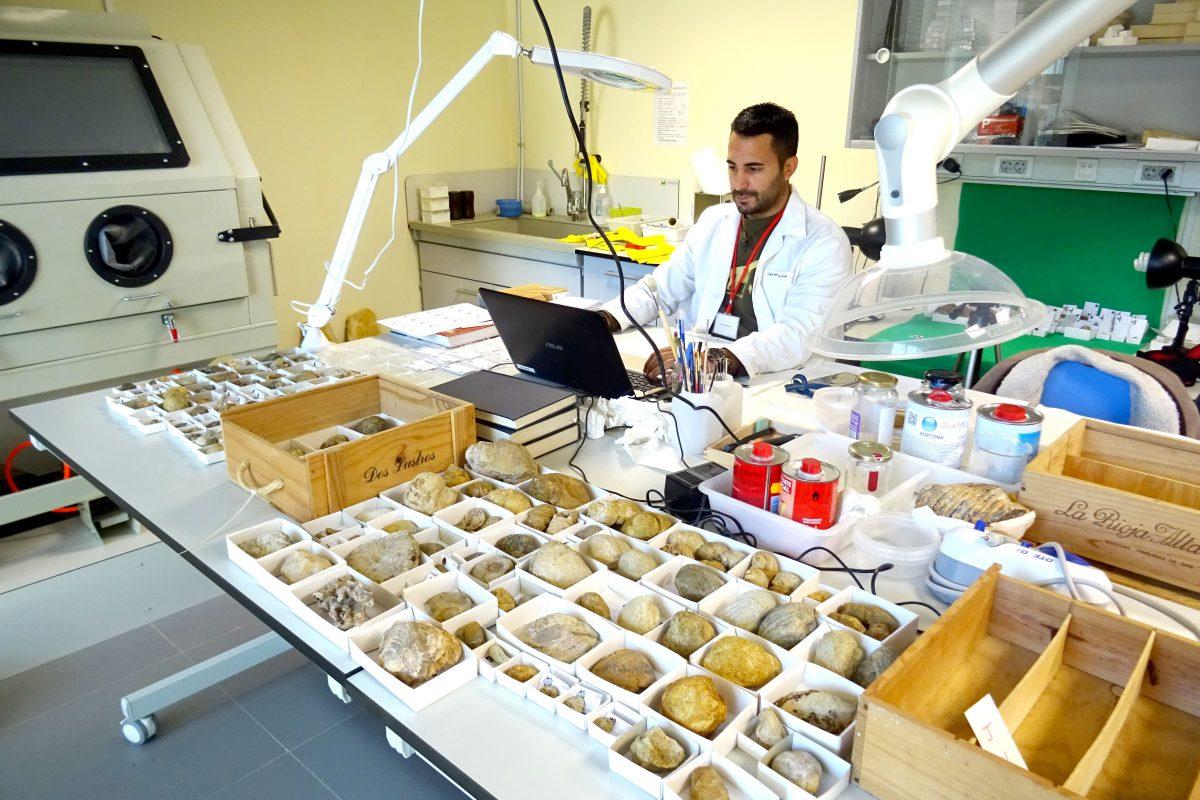 Laboratorio preparación paleontológica